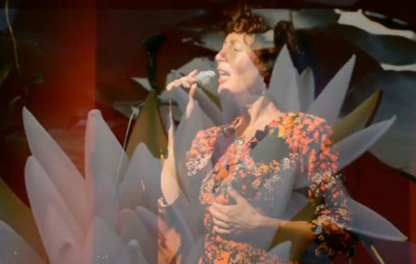 Jutta Glaser – Sump Sword Lily